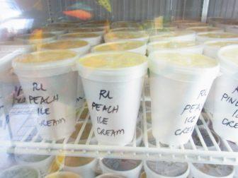 高橋果実店アイスクリーム