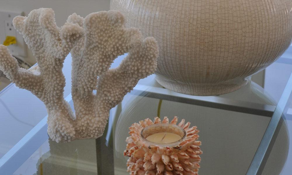 イリカイホテルの珊瑚