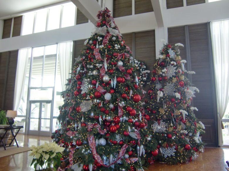 カハラのクリスマスツリー