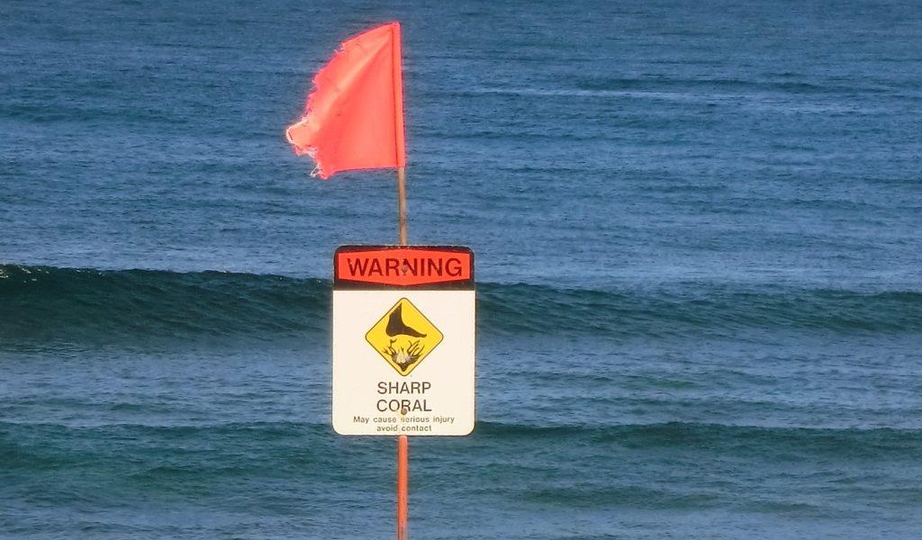 ハワイ尖ったサンゴに注意